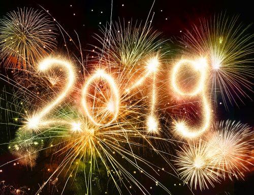FReDL wünscht ein gutes und gesundes neues Jahr!!